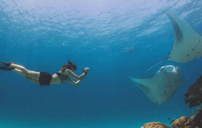 Swim with manta rays of Nusa Penida