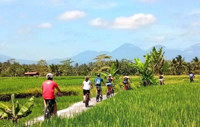 Bali Cycling Tours